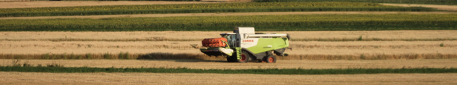 Harvest at ACS Landwirtschafts AG in Romania